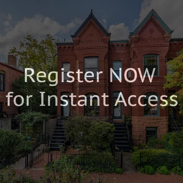 Capitol hill row houses for rent